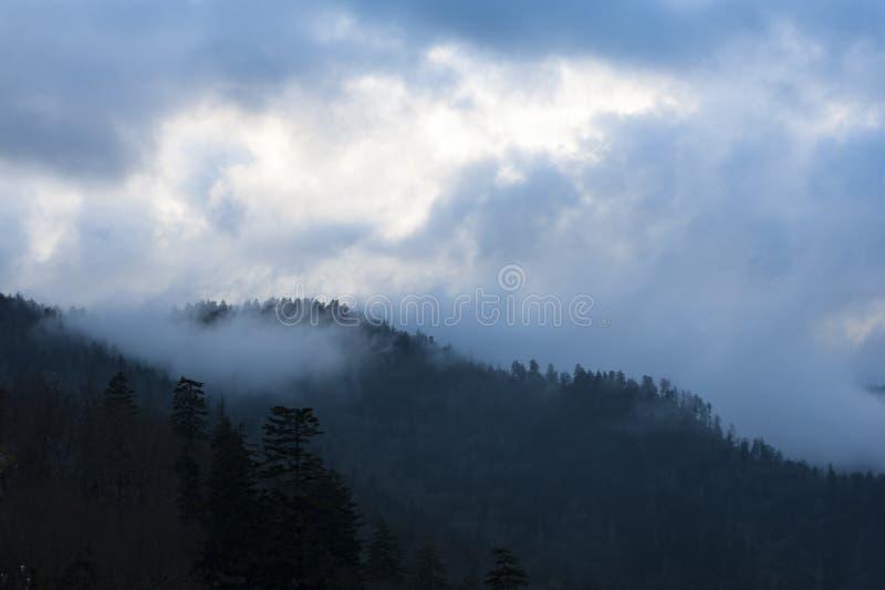 MgÅ'a i dym powstajÄ… ze wzgórz w Parku Narodowym Great Smoky Mountains, Townsend, TN zdjęcia royalty free