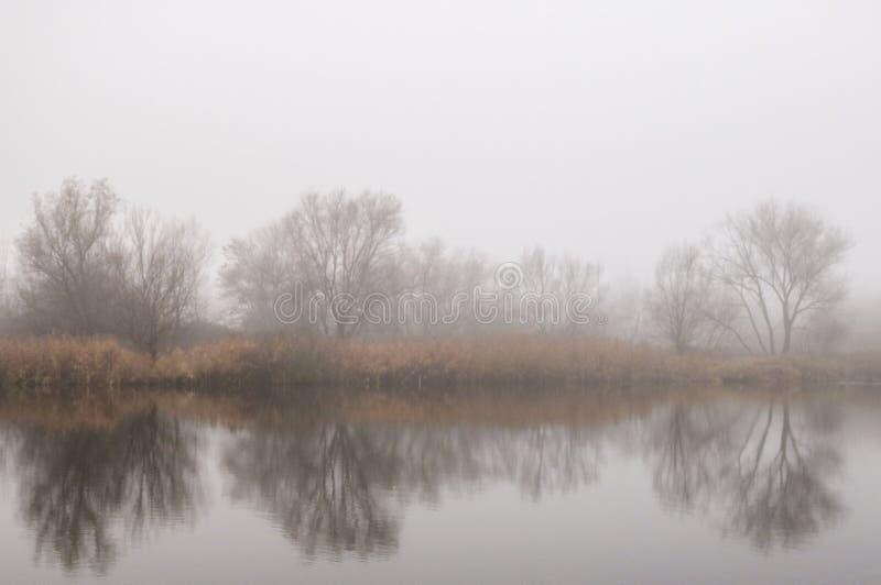 Mgła i jezioro obraz stock
