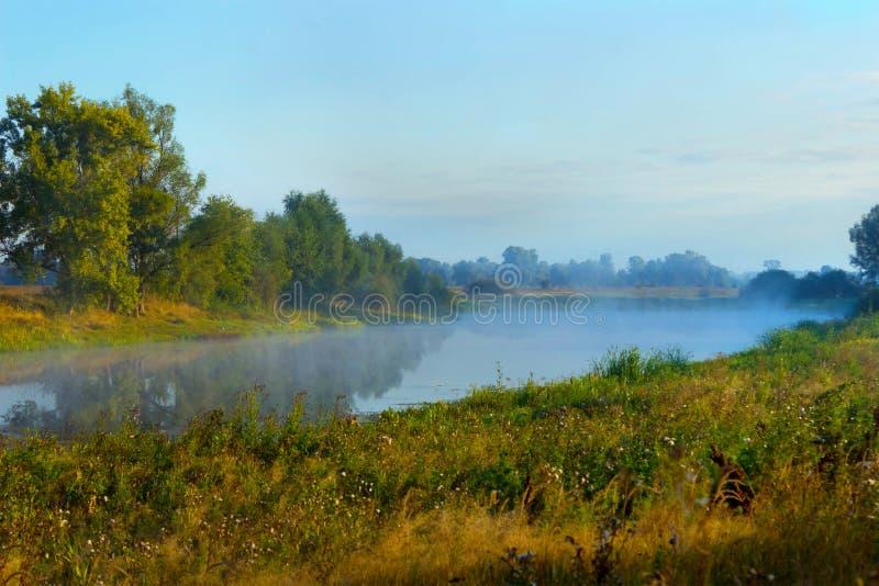 Mgła lub mgiełka nad jeziorem na lato ranku pi?kna wie? fotografia stock