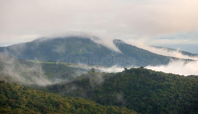 Mgła na górach i lesie zdjęcie stock