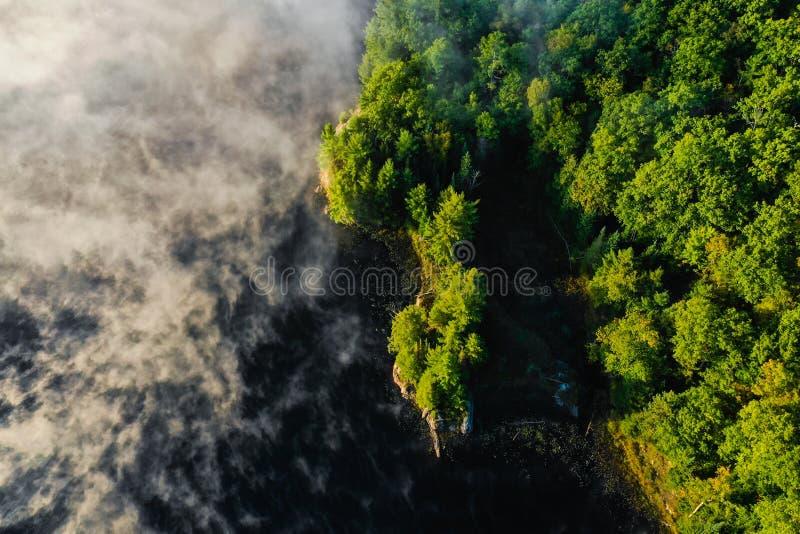 Mgła na jeziorze lasem obrazy stock