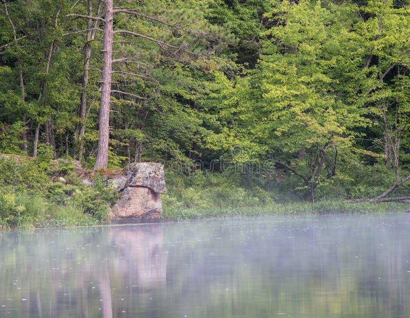 Mgła Na rzece W wczesnego poranku świetle zdjęcie stock