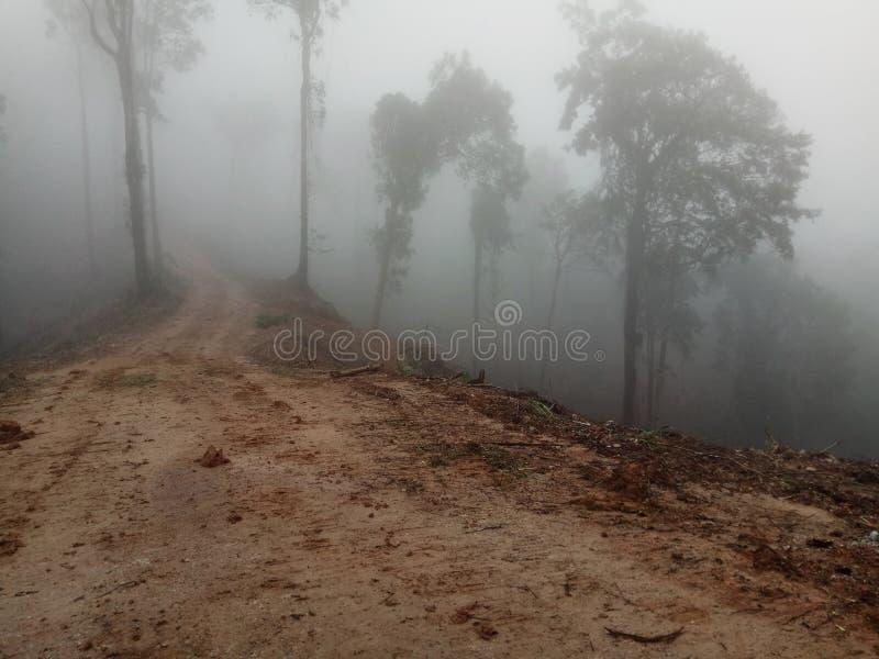Mgła na skłonach góry 3 obrazy royalty free
