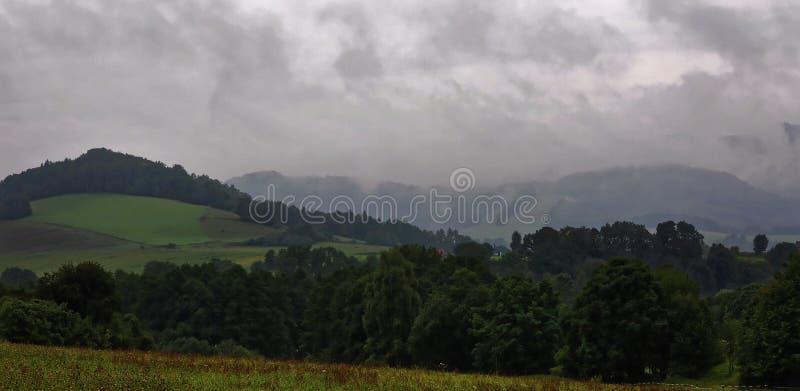 Mgła nad drzewami w górze obraz royalty free