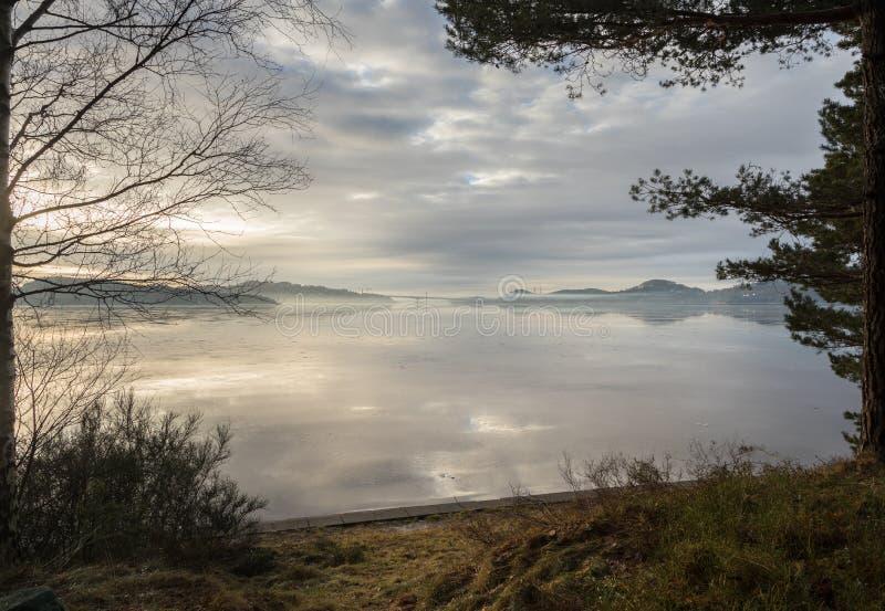 Mgła nad fjord w Kristiansand, z drzewami i trawą w przodzie zdjęcie royalty free