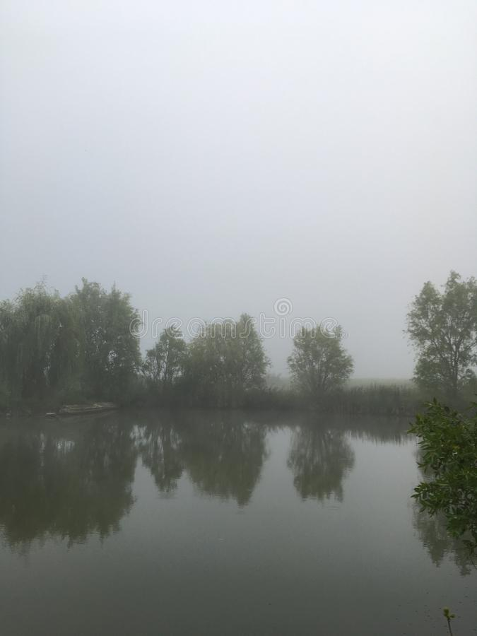 mgła nad jezioro obrazy stock