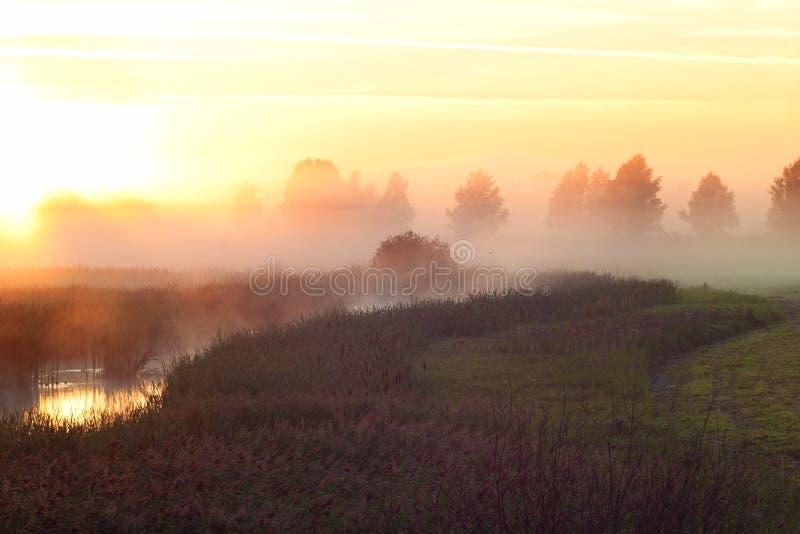 Mgła nad małą rzeką w ranku obrazy stock