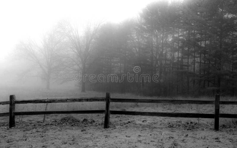 Mgła Nad ogrodzeniem i łąką obrazy royalty free
