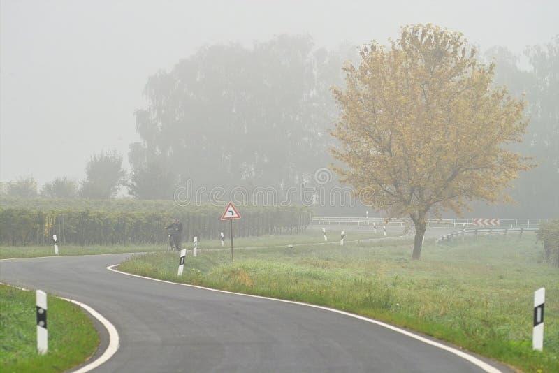 mgła nad transportem drogowym fotografia stock