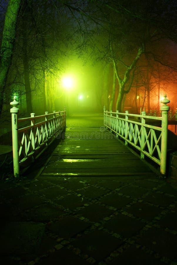 mgła park zdjęcia stock