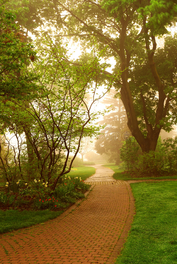 mgła park fotografia royalty free
