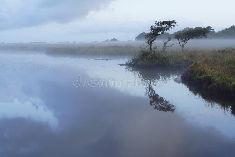 mgła szeroki basen fotografia royalty free