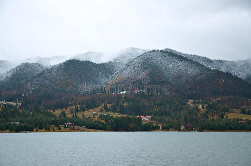Mgła w lasowym Bistrita Rumunia fotografia royalty free
