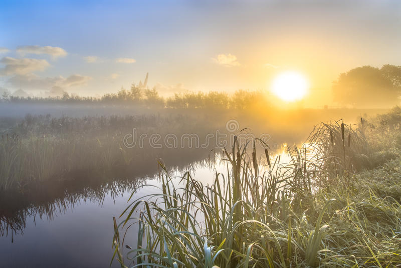 Mgławy wschód słońca nad rzeką w holenderskim countriside zdjęcia royalty free