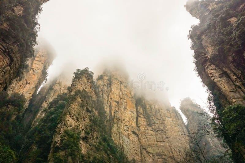 Mgłowa góra w Zhangjiajie lasu państwowego parku zdjęcia royalty free