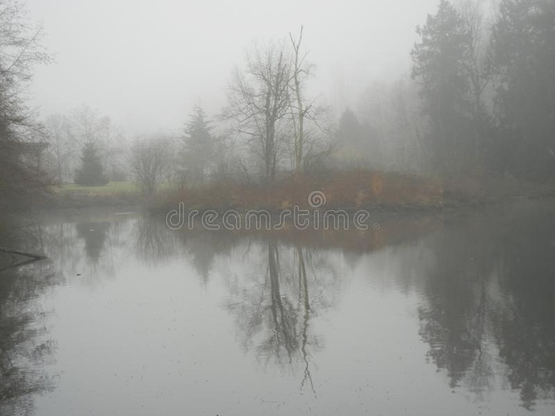 Mgłowa wyspa w Fishtrap zatoczce fotografia royalty free