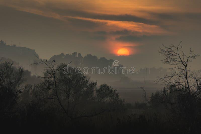 Mgłowi Ballona bagna przy zmierzchem obrazy stock