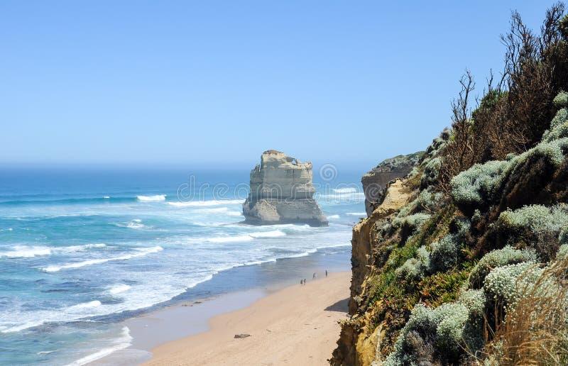 Mgłowy dzień na Australijskim wybrzeże pacyfiku obraz royalty free