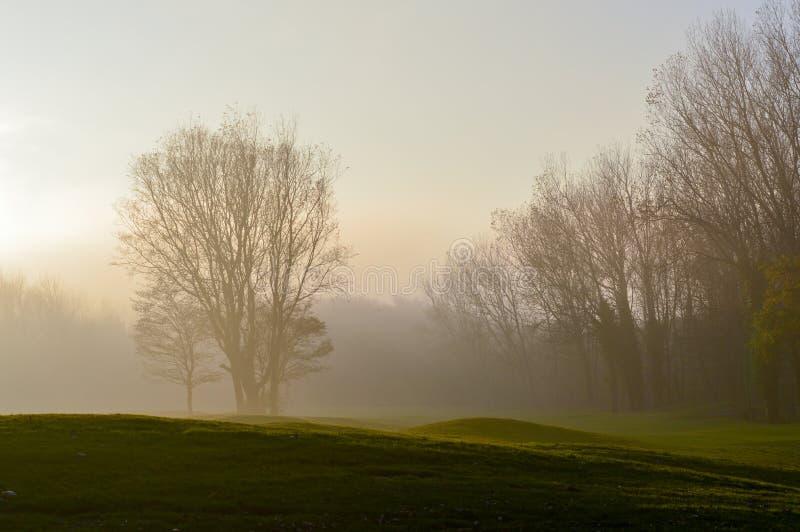 Mgłowy jesieni popołudnie w holandiach zdjęcie stock