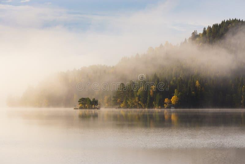 Mgłowy jesienny ranek jeziorem Naturalny wschodu słońca światło Trondheim teren w Norwegia zdjęcia royalty free