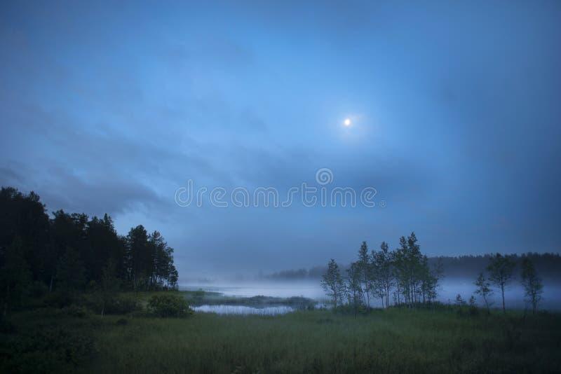 mgłowy jezioro obrazy royalty free