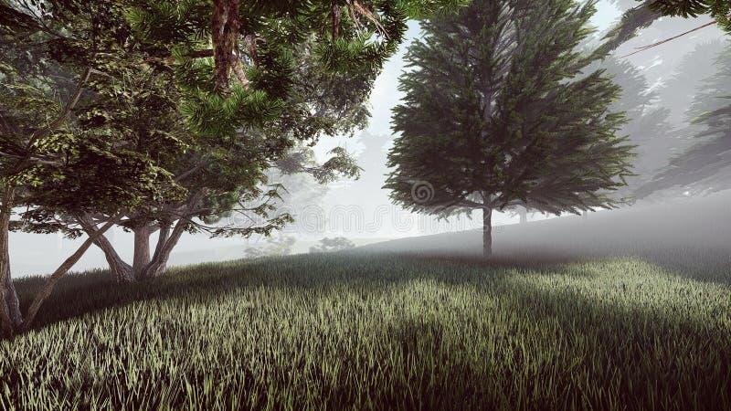 Mgłowy las z masywną trawą royalty ilustracja