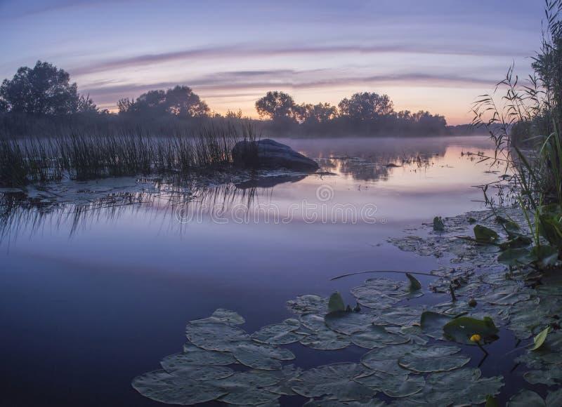 Mgłowy lato krajobraz z małą lasową rzeką obraz stock