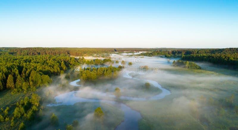 Mgłowy lato ranek zdjęcie royalty free