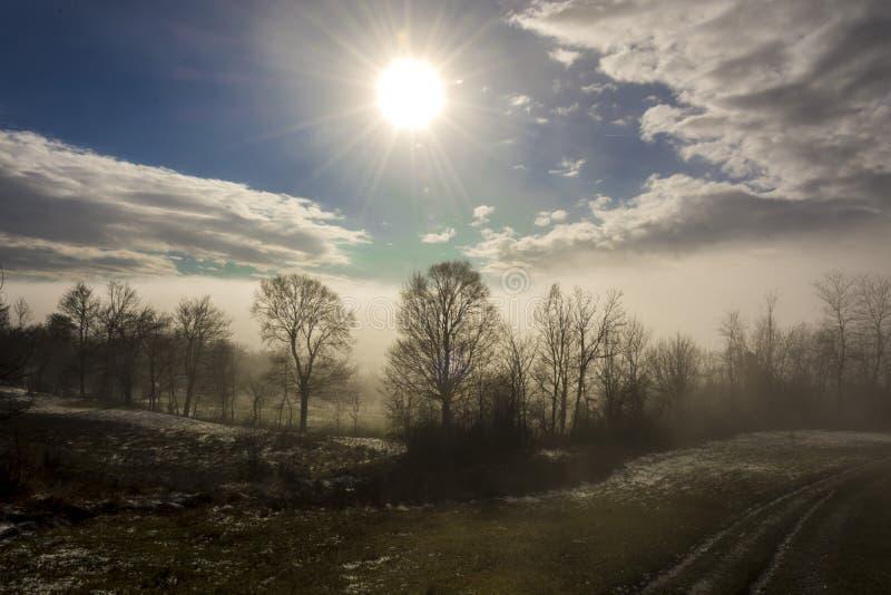 Mgłowy pole zdjęcie stock