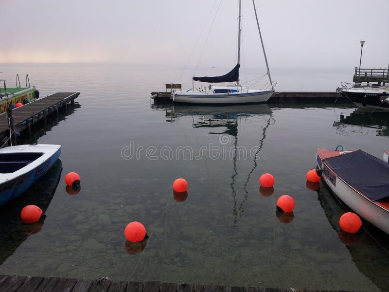 Mgłowy ranek jeziorną stroną obrazy royalty free