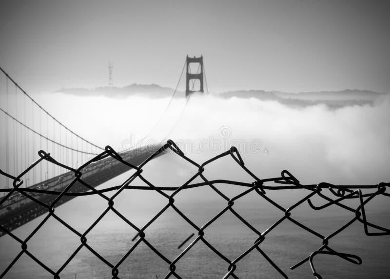 Mgłowy ranek na golden gate zdjęcie stock