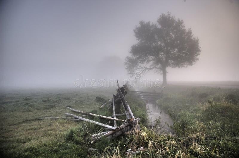 mgłowy wieś ranek fotografia stock