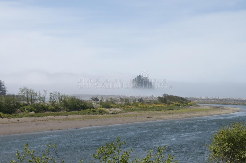Mgły kołysanie się wewnątrz nad ujściem i wiecznozielonym sosnowym lasem dalej zdjęcia royalty free