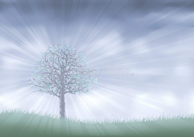 mgły królestwo; l10a:dziedzina ilustracja wektor