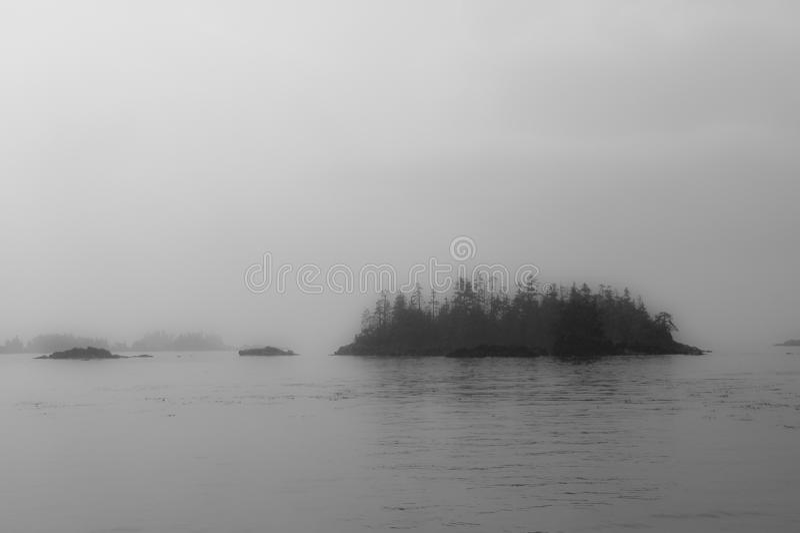 Mgły linia brzegowa, Ketchikan, Alaska blisko Tracy ręki Fjord obraz royalty free