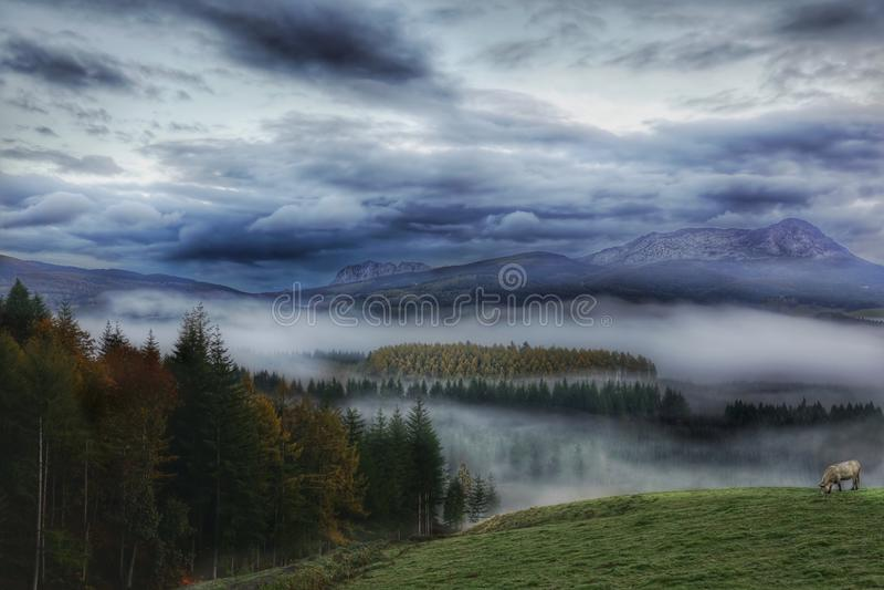 Mgły zakrywać góry i dolina zdjęcie stock