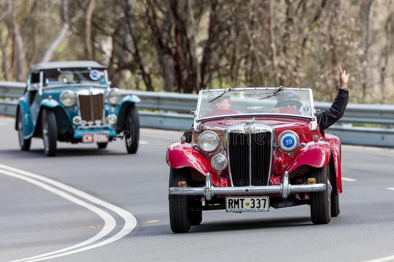 1949 MG TD Sports Roadster. Adelaide, Australia - September 25, 2016: Vintage 1949 MG TD Sports Roadster driving on country roads near the town of Birdwood royalty free stock photography