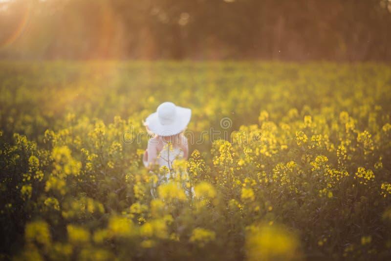 Mglista dziewczynka w białej sukience biegająca przez pole gwałtu o zachodzie słońca Zamierzony blask słoneczny, soczewka skupia  fotografia royalty free