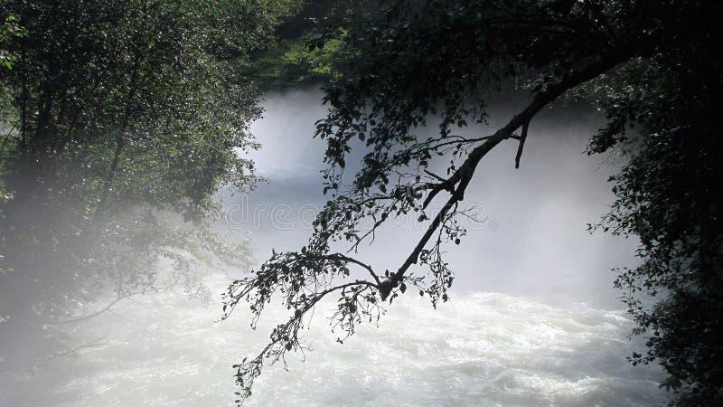 Mglista rzeka obraz stock