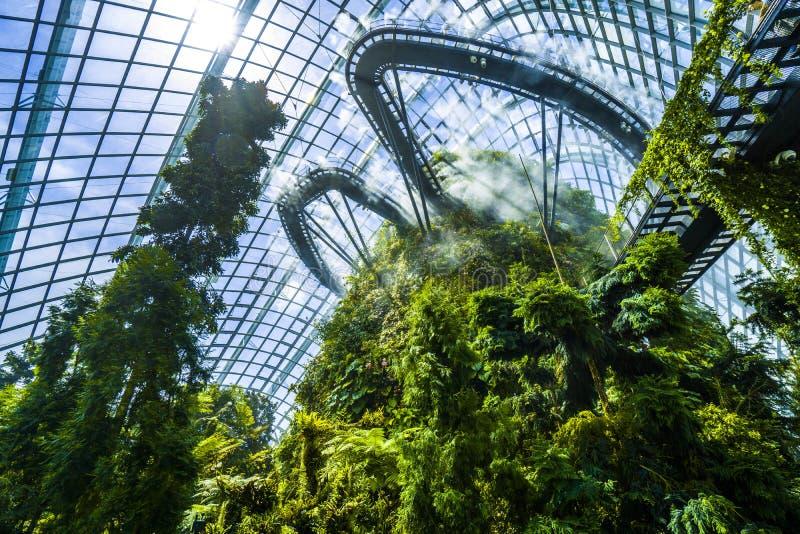 Mglisty Obłoczny las przy ogródami zatoką, Singapur fotografia royalty free