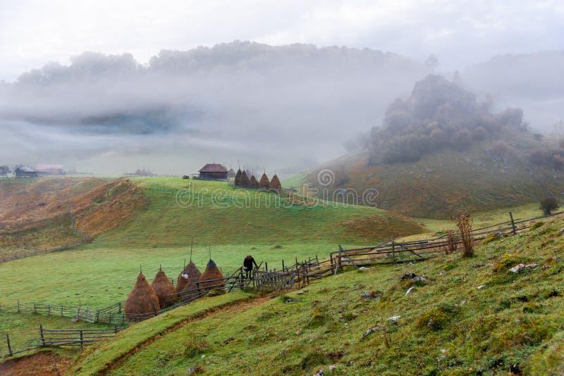 Mglisty ranek, ikonowy dom i drzewo w starej dalekiej wiosce Fundatura Ponorului obraz stock