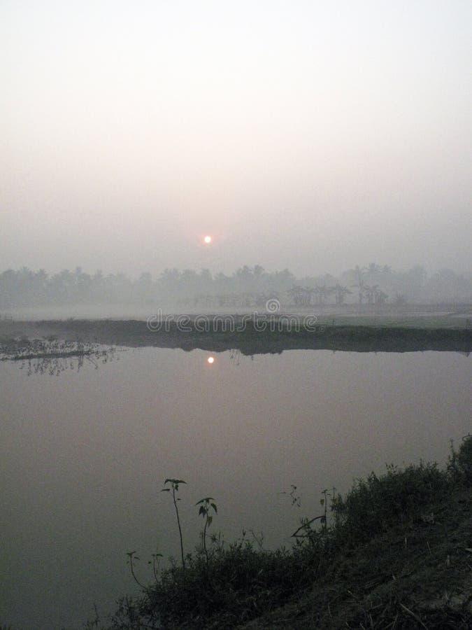 Mglisty ranek w Bengalia wsi obrazy royalty free