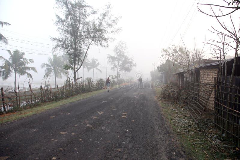 Mglisty ranek w Bengalia wsi zdjęcia royalty free