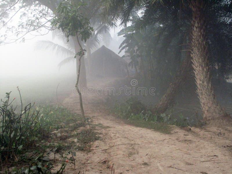 Mglisty ranek w Bengalia wsi zdjęcia stock