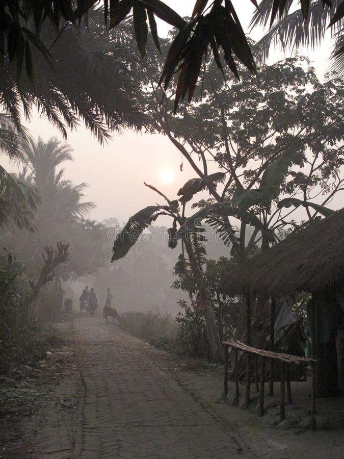 Mglisty ranek w Bengalia wsi zdjęcie stock