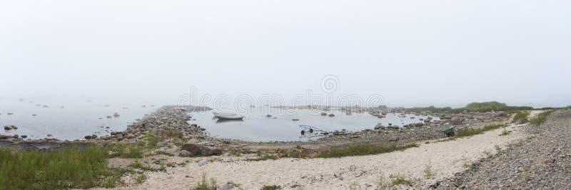 Mglisty skalisty seashore fotografia royalty free