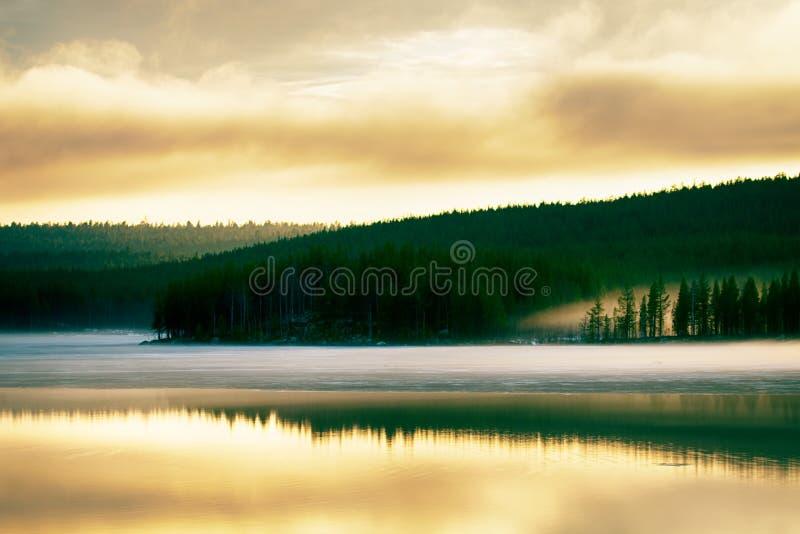 Mglisty spokojny wiecz?r na lasowym jeziorze, zmierzch fotografia royalty free