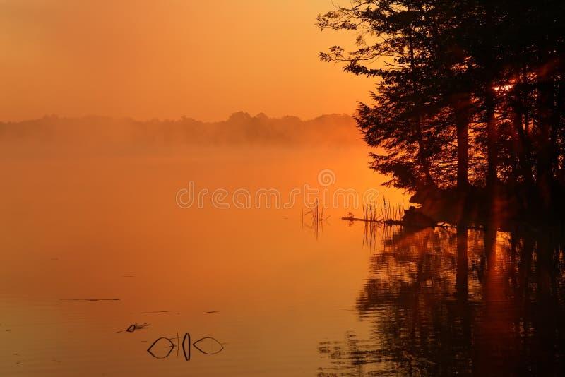 Mglisty wschód słońca przy szarańcza stanu Jeziornym parkiem fotografia stock