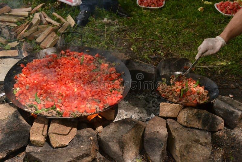 Mięsa i ogienia kebab w wymyśleniu obraz royalty free