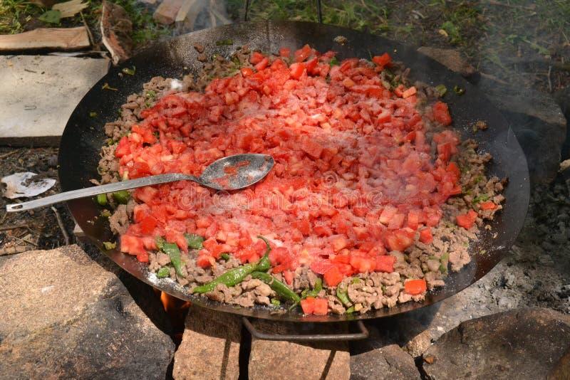 Mięsa i ogienia kebab w wymyśleniu zdjęcia stock